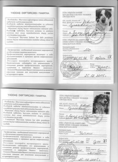 Doggie_passports0001