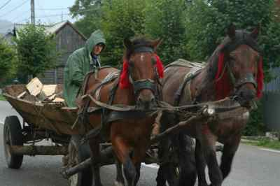 Cart_and_horses_1