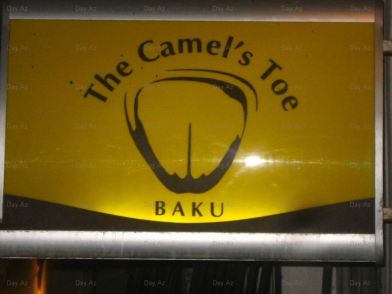 Camel_toe_1